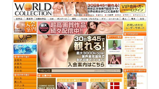 ワールドコレクションTOP画像